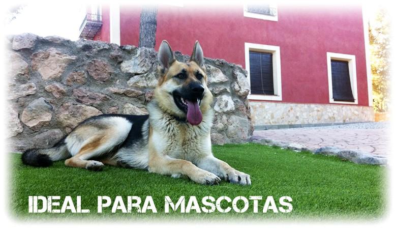 Césped artificial Perros y Mascotas